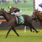High Tranquility Heads to Kembla